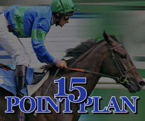 15 Point Plan